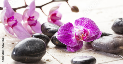 zen femininity with orchid flowers and massage stones - 81274408