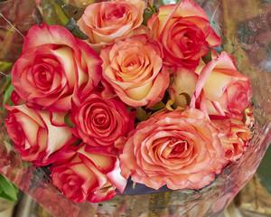 rose flowers bouquet closeup, natural background