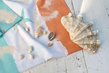 bénitier et autres coquillages sur drap de bain