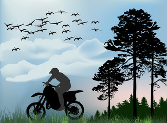 silhouette of man on motorcycle near forest
