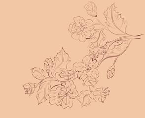 Sketch of Sakura Branch