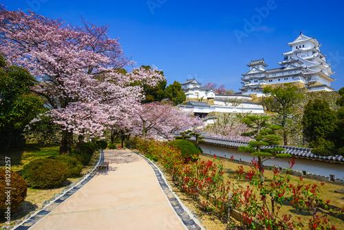 Fotobehang Japan Himeji Castle in cherry blossom season, Hyogo, Japan