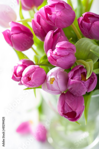 Foto op Canvas Tulp beautiful purple tulip flowers in vase