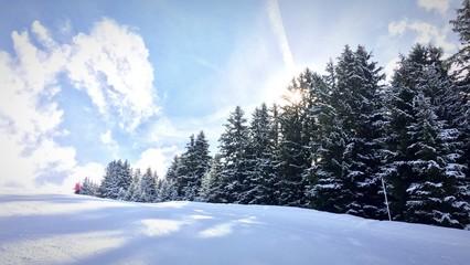Petit matin à la montagne