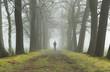 Man walking in a lane on a foggy, spring morning.