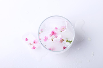 pink flowers ice cube in glass,top view