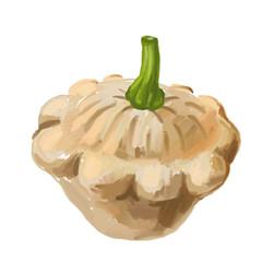 picture of Scalloped custard squash