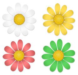 Set bunte Blumen