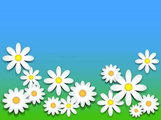 3D-daisies