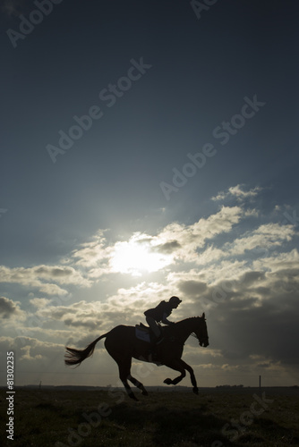 Fotobehang Paardrijden Equus ferus caballus - Horse galloping with rider