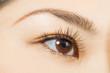 アジア人 ������ブラウンカラーコンタクトレンズ Eyes of the Asian woman