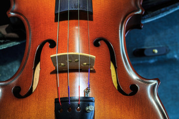 Violin and its case