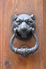 Classic iron knocker on wooden door .