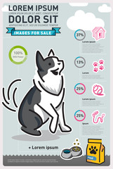 Infographic Food Dog