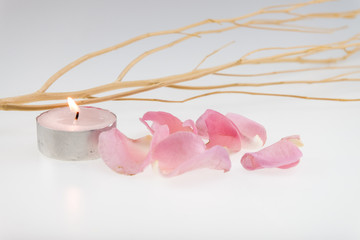 light pink rose and dried wood stick with tea light candle