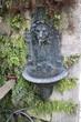 Leinwanddruck Bild - Lion water fountain in Sorrento, Italy.