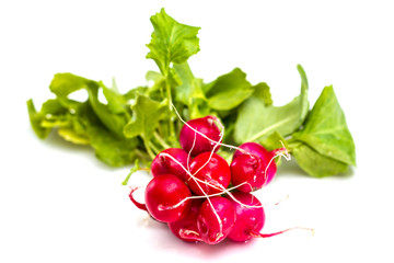 Bunch of fresh red radishes isolated on white background