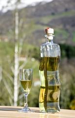 la bottiglia di liquore