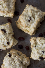 Sultana Scones on a Tray