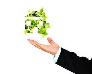 Business Hand receives Green House,environment concept