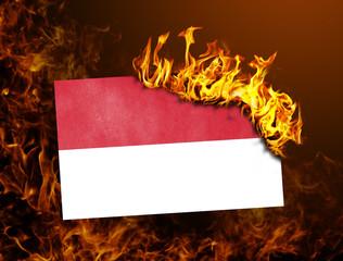 Flag burning - Indonesia