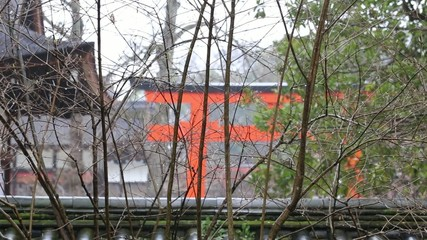 Raining Temple, Kyoto, Japan