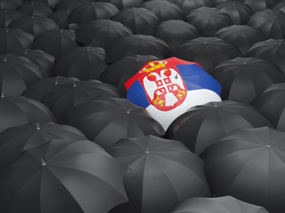 Umbrella with flag of serbia
