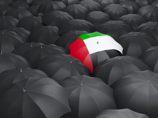 Umbrella with flag of united arab emirates