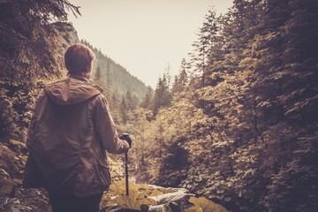 Hiker with hiking poles walking in a mountain forest