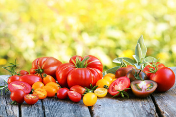 Tomaten - Sorten - Vielfalt
