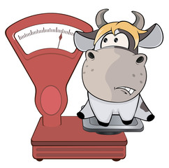 A small cow and weighing scale. Cartoon