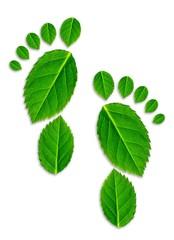 Ökologische Fußspur