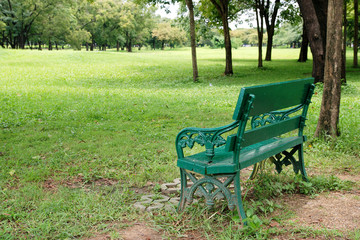 Public Bench in the park on green field