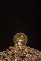 Idea. Light bulb glowing in soil as idea or energy concept