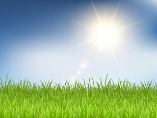 Grass and sunny blue sky