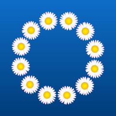 Daisies Flower Coronal