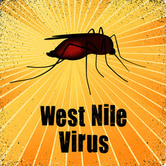 Mosquito, West Nile Virus, heath care, medical, gold rays