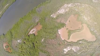 manglar selva y mar