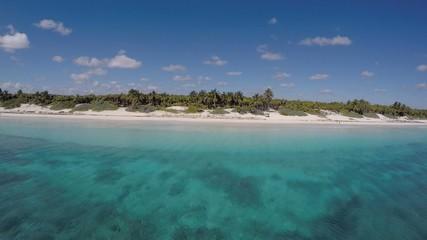 vista aerea playa selva  mar caribe  y arrecife