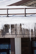 Icicles on the roof of a house - 81370658