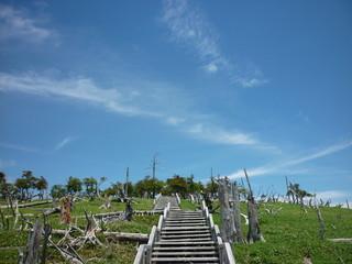 大台ケ原の階段