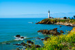 Pigeon Point Lighthouse in California - 81375658