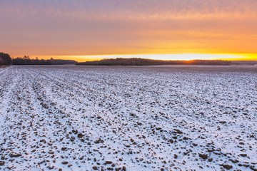 Beautiful winter field landscape.