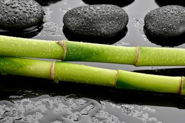 Mokre bambusy z kamieniami bazaltowymi