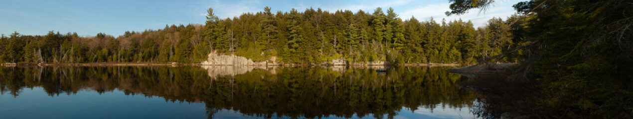 Spring forest reflections - panorama, Algonquin Park