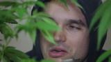 Marijuana user