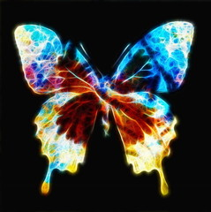 illustration of a butterfly, mixed medium, color background, fr