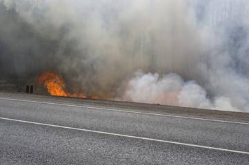 Road In Fire
