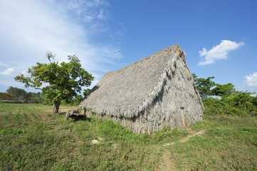 Vinales Cuba Traditional Tobacco Barn