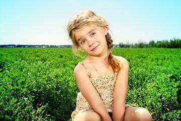 meadow sunny